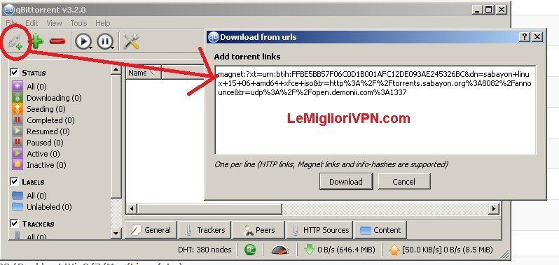Vpn on qbittorrent